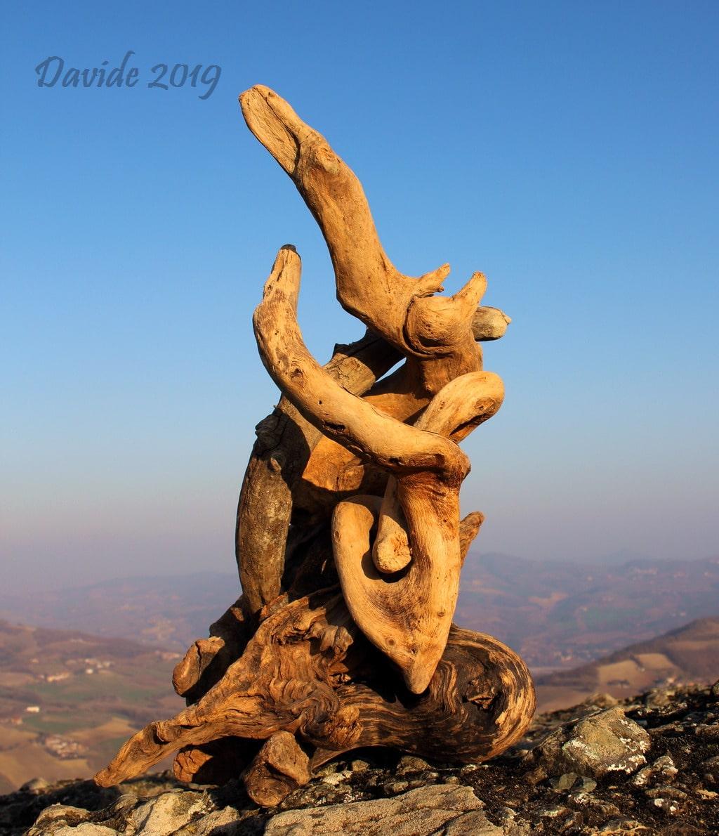 """Davide, """"Forme sfuggenti #23 – Pietra Perduca"""", Travo (Piacenza, Emilia-Romagna – Valtrebbia, Italia), febbraio 2019. © Davide Tansini"""