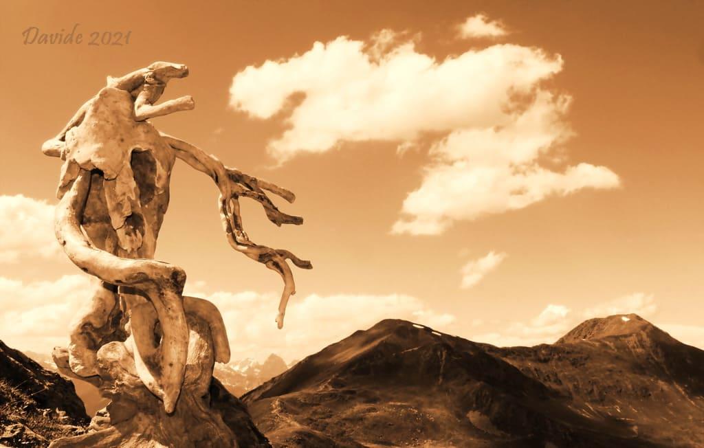 """Davide, """"Forme sfuggenti #74 – Penser Jochée"""", Sarentino/Sarntal (Bolzano-Alto Adige/Bozen-Südtirol, Trentino-Alto Adige/Südtirol – Val Sarentino, Italia), giugno 2021. © Davide Tansini"""