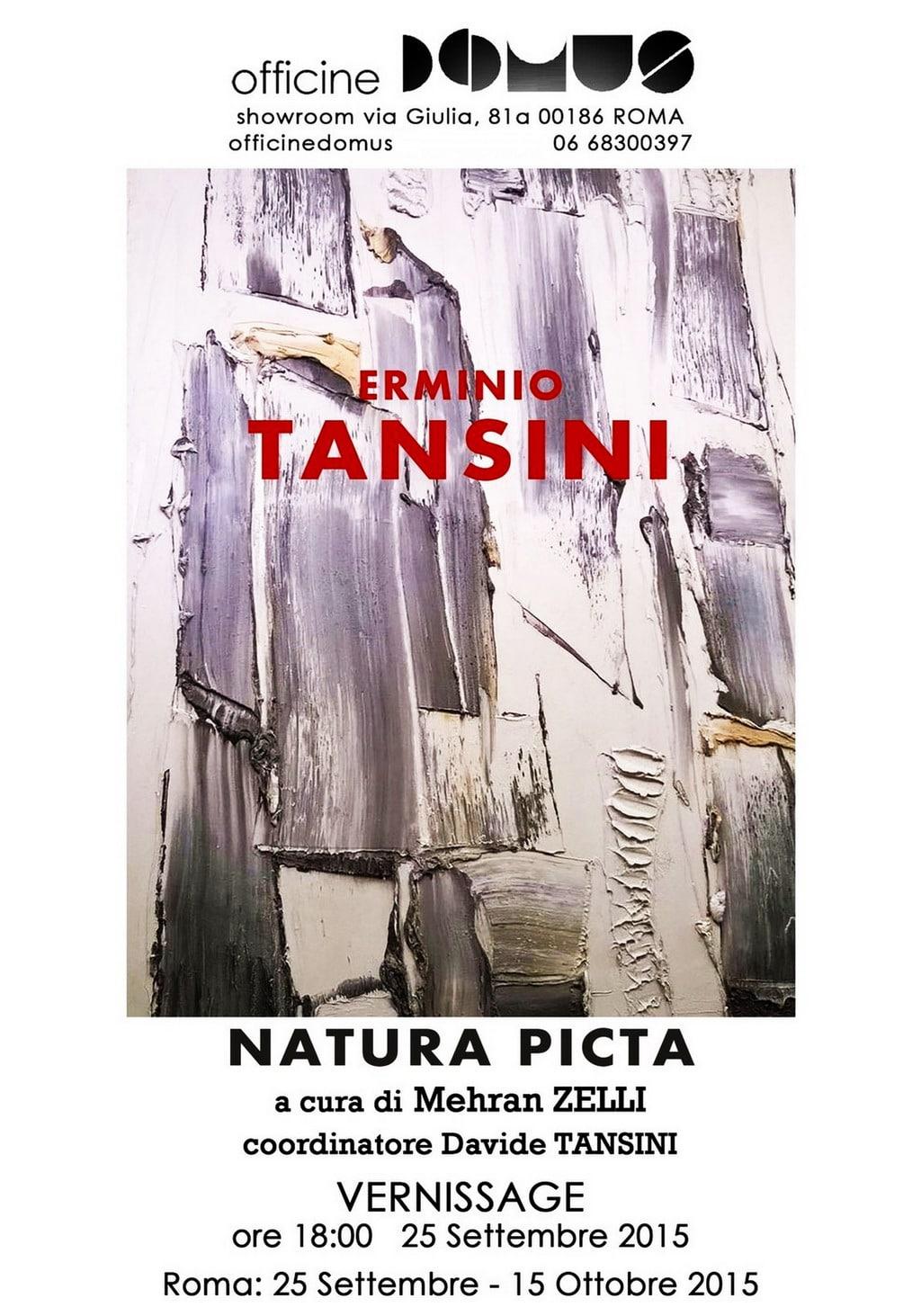 """Manifesto della mostra di pittura e scultura """"Erminio Tansini. Natura Picta"""" (Roma, 2015). Archivio Davide Tansini"""