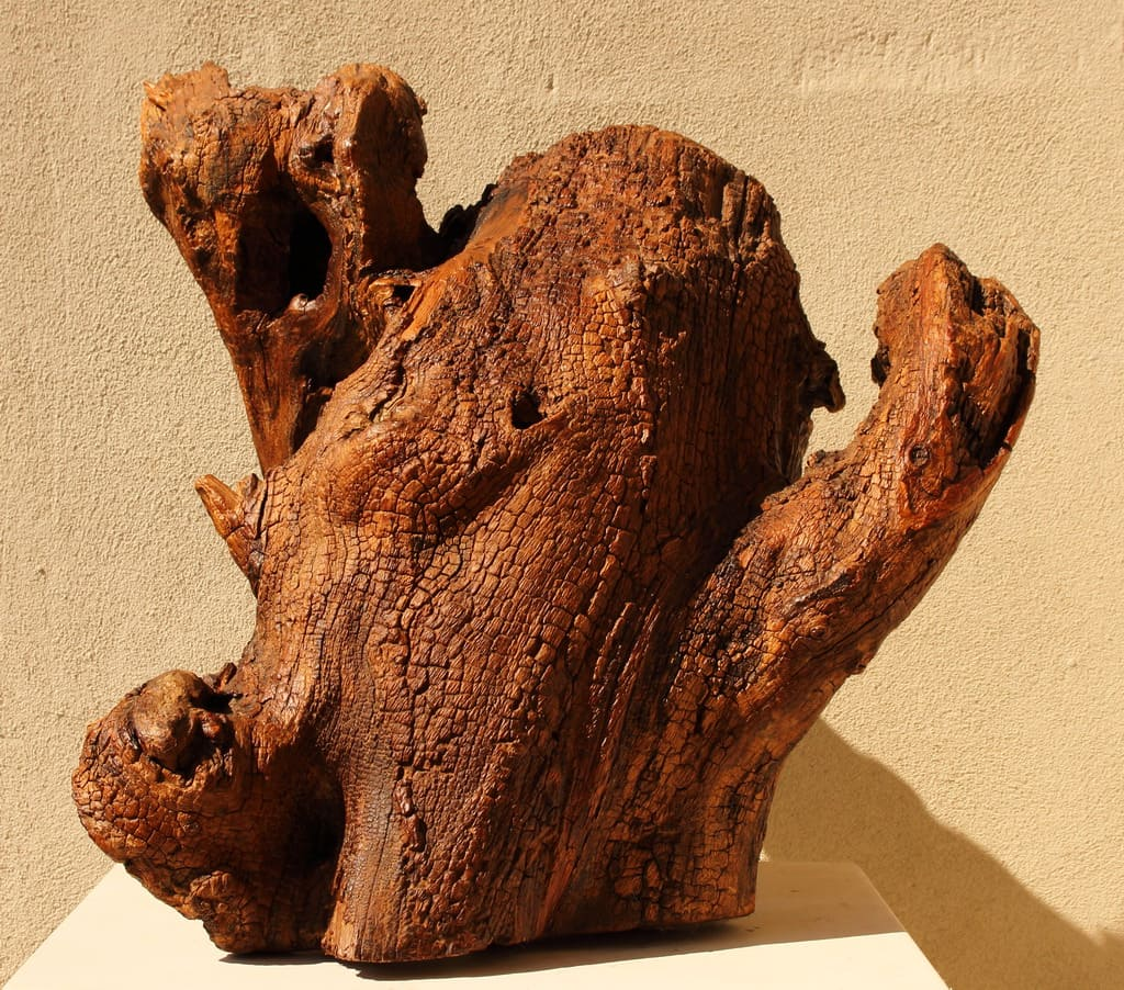 """Erminio Tansini, """"Senza titolo"""", 2018, legno della Valtrebbia. © Erminio Tansini"""